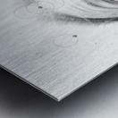 SRC Metal print