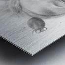 Tomatowen Metal print