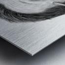 Spearit Metal print
