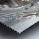 1538233125142 (1) Metal print
