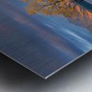 Morning Glow Metal print