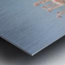 Leavers Metal print
