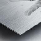 Pazzle Metal print