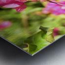 Flower39 Metal print