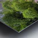 River7 Metal print