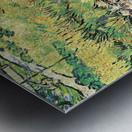 Meadow in the Garden of Saint-Paul Hospital by Van Gogh Metal print
