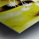 DSC_0163 (3)_LI Metal print