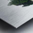 Island Lawn Metal print