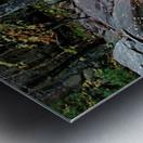 Chikanishing Trail Metal print