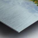 CC9A6BD8 E8A7 4807 8C93 F2153C070E80 Metal print