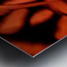 1542143674246_1542151713.53 Metal print