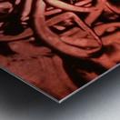1542089361122 Metal print