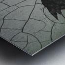 Find Me In The Cracks Metal print