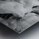 4D033B1B 1AF0 4C60 9200 8D3F44ADDA1D Metal print