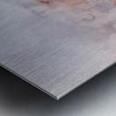 AD648292 25BD 4211 B30E 7CE0D4382D0D Metal print