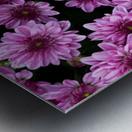 Purple flowre Metal print