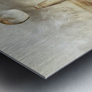 Golden featherdrops Metal print