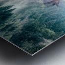 Antler Metal print