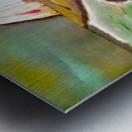 0 2 7 Metal print