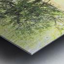 IMG_0121 Metal print