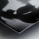 Plant Shadow Metal print