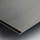 Chiffron Metal print