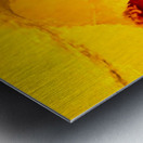 9889B04B DA04 43C9 BBDF 616AB70E13D9 Metal print