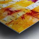 Twilight Aspens Metal print
