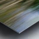 Moving Trees 30 Landcape 52 70 200px Metal print