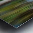 Moving Trees 31 Landcape 52 70 200px Metal print