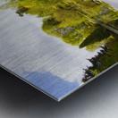 CW 029 Altamont Garden, Co.Carlow Metal print