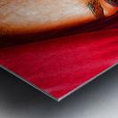 Bianca in red Metal print