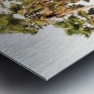 SWAYING PALMS Metal print