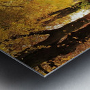 JPT 5921W Metal print