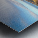 Franey Metal print
