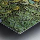 The garden of the Daubignys by Van Gogh Metal print