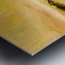 7F5B65BA 78B4 4FE8 AC9E C50952880473 Metal print