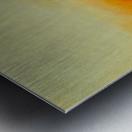 9691F8CF 366B 4C09 98E5 3AE62D617EA9 Metal print