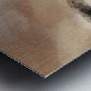 3CB7573F C1B1 4F38 8346 C328B8F42567 Metal print