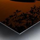 Egret Eclipse Metal print