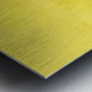A4B2B180 F53F 4400 9C59 CD2BC0D679CB Metal print