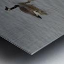 Mates Metal print