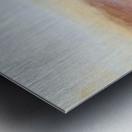 DD2FADA5 2435 4E3B 9E4D A280EA452E9F Metal print