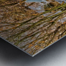 Canalside Living Metal print
