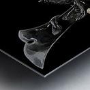 Samurai Helmet  Metal print