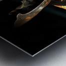 Samurai Helmet With Tassels Metal print