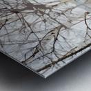 Canal Lachine Metal print
