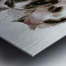 Feline Chow Time Metal print
