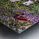 My Secret Iris Garden Metal print