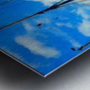 A Study in Masts Metal print